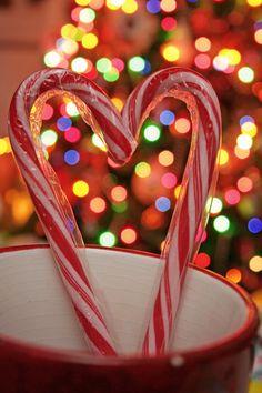 Christmas Love :) ¸.•♥•.  www.pinterest.com/WhoLoves/Christmas  ¸.•♥•.¸¸¸ツ #Christmas