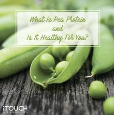 Is pea protein all that it is cracked up to be? In this blog post, we will take a look at the superfood and see exactly what it is about. This is your guide to what pea protein is and whether or not it is healthy for you: click the link to learn more! Delicious Chocolate, Chocolate Recipes, Superfood, Protein, Vegan Recipes, Drink, Learning, Healthy, Blog