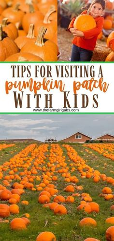 Tips For Visiting a Pumpkin Patch With Kids. Helpful tips for picking pumpkins with your family. Fall Crafts For Toddlers, Thanksgiving Crafts For Kids, Toddler Crafts, Autumn Activities, Outdoor Activities, Family Activities, Pumpkin Crafts, A Pumpkin, Parenting Tips