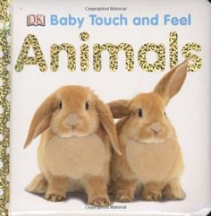 Animals (Baby Touch and Feel) by DK Publishing http://smile.amazon.com/dp/0756634687/ref=cm_sw_r_pi_dp_gPUkvb0JQX9BV