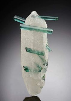 A neat display of slender gemmy green Elbaite crystals measuring to seen spanning across a rather flattened colourless-white terminated Quartz crystal. A pleasing Elbaite Tourmaline crystal specimen from the Manoel Mutuca Mine, Brazil. Minerals And Gemstones, Rocks And Minerals, Crystals And Gemstones, Stones And Crystals, Rare Crystal, Mineral Stone, Rocks And Gems, Natural Crystals, Quartz Crystal