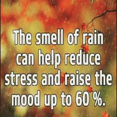 The smell of rain is good for you!