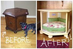 DIY Side Table Dog Bed