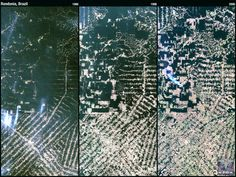 This natural-colour Landsat 5 time series shows the progression of deforestation in Rondonia, Brazil, from 1986 to 2006.