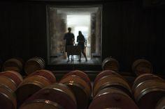 At Va. wineries, high design invades the tasting room