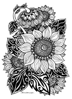 I would love to turn this into a Zentangle. Dibujos Zentangle Art, Zentangle Drawings, Zentangle Patterns, Art Drawings, Zentangles, Colouring Pages, Adult Coloring Pages, Coloring Books, Sunflower Coloring Pages