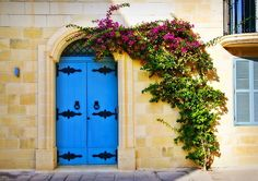 House front in Mdina, bougainvillea creeps over a new door