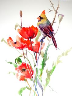 Female Cardinal and Poppies, bird and flowers red Art, Bird Artwork, Original, watercolor painting, northern cardinal, large watercolor art by ORIGINALONLY on Etsy #watercolorarts