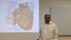 Zusanli (Estomago 36) Acupuntura,Dr. Tomas Alcocer, Focko Capsula