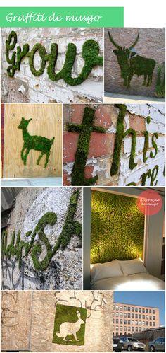 Graffiti de musgo                                                                                                                                                                                 Más