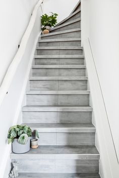 Stair Well, Cosy House, Happy New Home, Stair Decor, Steps Design, Stair Steps, House Stairs, Stairway To Heaven, Stairways