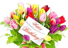 happy birthday flowers pictures | happy birthday! colorful bouquet of fresh tulips with card