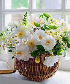 Michaelmas daisies and white roses. Summer Flower Arrangements, Beautiful Flower Arrangements, Floral Arrangements, Beautiful Flowers, Ikebana, Blossom Flower, Flower Art, Summer Deco, Corporate Flowers