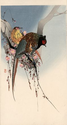 Ohara Koson (1877-1945)  - A pair of green pheasants