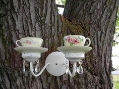 Light fixture/tea cup bird feeding station.