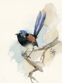 One of a Kind Watercolour Artwork by CanotStopPainting Fairy Wren Original Watercolor Painting, Bird Painting, Bird Art, Bird Watercolour Art, Painting of Bird Size: 9x12.2 Medium: top branded watercolor paints on Saunders Waterford rough watercolor paper, 140 lb. (300 gsm) Signed front