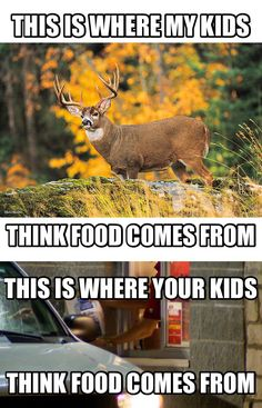 How can you be anti hunting and eat commercially killed drive through meat???