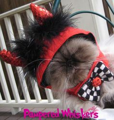 Little Devil costume for cats and dogs by PamperedWhiskers on Etsy, $18.99