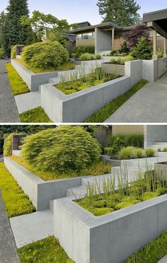 Like this but would have incorporated a second material, not all the same concrete.  And need added color in plantings