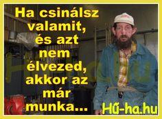 Hű-ha.hu - Az élet humorosabb oldala...: Kálmán és a munka...