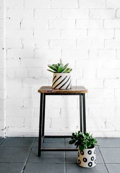 Monochrome painted planters, perfect for cacti and succulents.