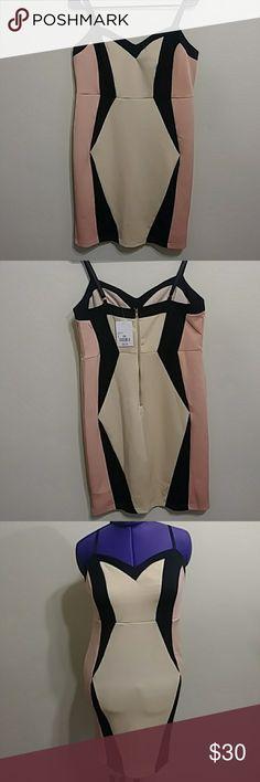 Forever 21 Plus Dress Pink Nude & Black Dress Never Worn 2X Forever 21 Dresses