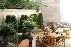 Terrace, garden, containers, urban, garden, landscape, design, urn, planter, summer, outdoor furniture