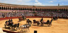 Exhibición Anual de Enganches en #Sevilla