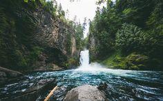 Lataa kuva Toketee Falls, Vesiputous, river, metsä, kauniita maisemia, USA, Oregon