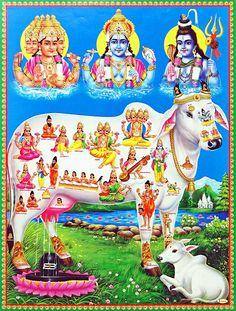 do canto superior esquerdo : Brahma, Vishnu, Shiva Nandi a vaca sagrada. Baby Krishna, Lord Krishna, Lord Shiva, Krishna Radha, Lord Vishnu Wallpapers, Lord Murugan, Hindu Deities, Hinduism Symbols, God Pictures