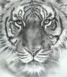 рисунок тигр: 26 тис. зображень знайдено в Яндекс.Зображеннях