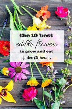 Did you know dandelions are edible? If picked early on, they have a sweet honey-like flavor, but don't wait too long as they get more bitter as they get more mature. Click through to read about 9 other edible flowers to grow and eat by Garden Therapy.