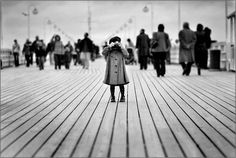 Cute subject, limited depth of field, and leading lines from the boardwalk all add a lot to this image. Notice, too, that the horizon line is on the upper third of the image, not right in the middle.