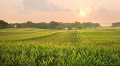 Farming across the Midwest will be challenged by a shifting climate and may struggle to keep up crop production