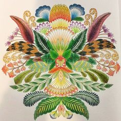 """""""First page of Millie Marotta's Tropical Wonderland, using Derwent Artists 12pc #creativelycoloring #majesticcoloring #beautifulcoloring…"""""""