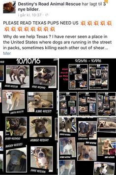 10/13/16 PLEASE READ/SHARE/TRY TO HELP!! THANK YOU! /ij🐾🐾 https://m.facebook.com/story.php?story_fbid=1006322906160094&id=627908307334891&__tn__=%2As