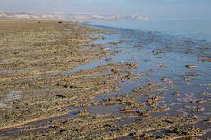 Praia de areia e argila