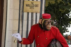 """The Walled Off Hotel Banksy.  [Usually """"boutique hotel"""" implies comfort. A person should not be comfortable in this hotel - he or she should be thinking...a lot.]"""