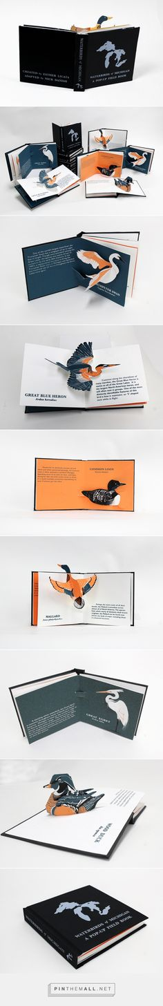 Waterbirds of Michigan: A Pop-Up Field Book on Behance                                                                                                                                                      More