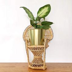 Handcrafted rotin gris marron intérieur Herb plante doublé panier osier mur Planteur