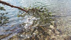 Blogi  OMAISAPU.fi      : Omaisapu toivottaa huikeilla kuvilla Vappua