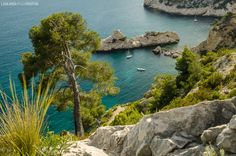 20130501 Luminy 276 Il fait beau, pas trop chaud : découvrez les Calanques de Luminy à Marseille