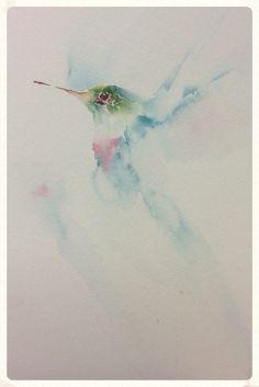 Acuarela de colibrí