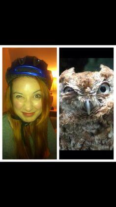 Owl / Ruby