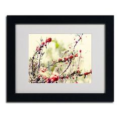 """Trademark Art """"Summer Melody"""" by Beata Czyzowska Young Framed Photographic Print Size: 16"""" H x 20"""" W x 0.5"""" D, Frame Color: Black"""