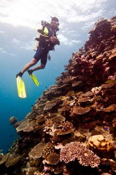 Top Destinations - PADI - Find Out Where to Scuba Dive - Top 10 Destinations To Scuba Dive - Men's Fitness