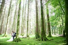 Gougane Barra Forest Park - the perfect place for wedding photographs Ireland Wedding, Forest Park, 25th Anniversary, Romantic Weddings, Wedding Pics, Holiday Destinations, Perfect Place, Fairytale, Photographs