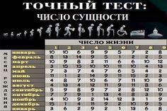ЧИСЛО СУЩНОСТИ получается при сложении чисел дня, месяца и года рождения. При этом полученную сумму надо сократить до однозначного числ...
