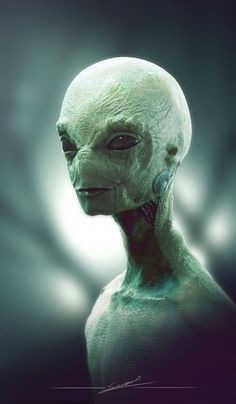 Alien by Soren Zaragoza Aliens And Ufos, Ancient Aliens, Alien Creatures, Fantasy Creatures, Alien Aesthetic, Bigfoot Sightings, Grey Alien, Alien Character, Alien Concept Art