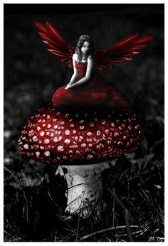 Google Image Result for http://www.deviantart.com/download/36529859/Red_Fairy_by_ArteDiAmore.jpg